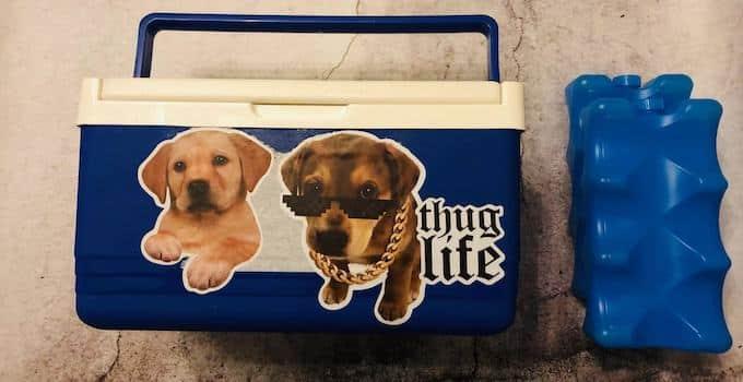 Kühlbox und Kühltaschen im Handgepäck