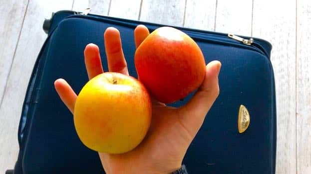 Äpfel im Handgepäck